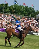 Polo - My Favourite Sport
